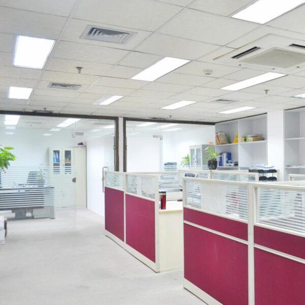 32W LED panelė 120x30 Algine 2