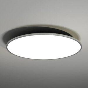 Lubinis šviestuvas WANTO 80