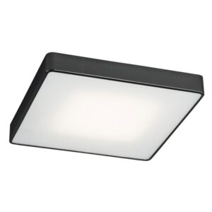 Lubinis šviestuvas Ontario LED 25