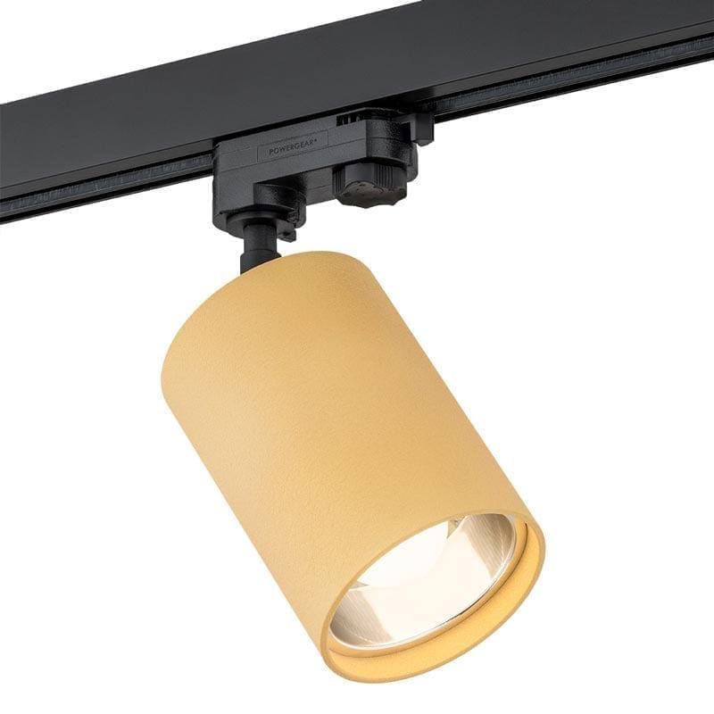 Akcentinis šviestuvas Bergen Gold 3F